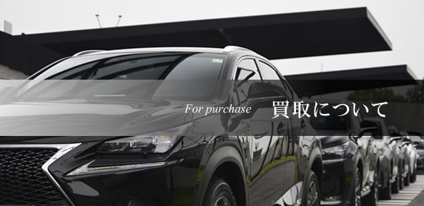 東浦和中古車買取強化中バナー